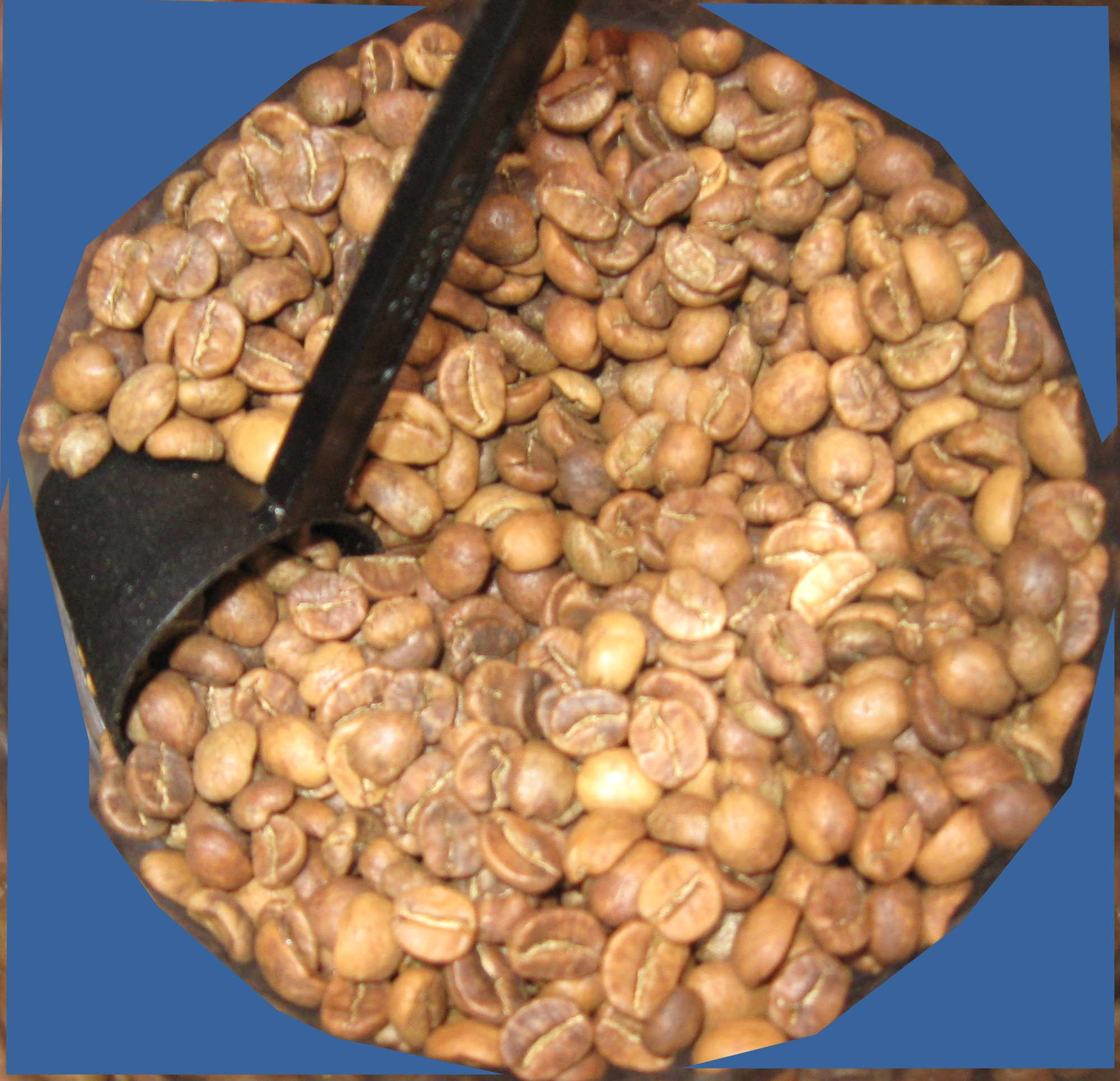 Home Roasting Coffee ~ Chances at home roasting coffee now we have a steady