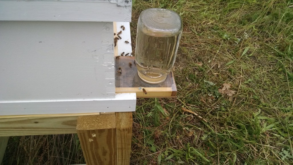picture of bee hive with boardman feeder